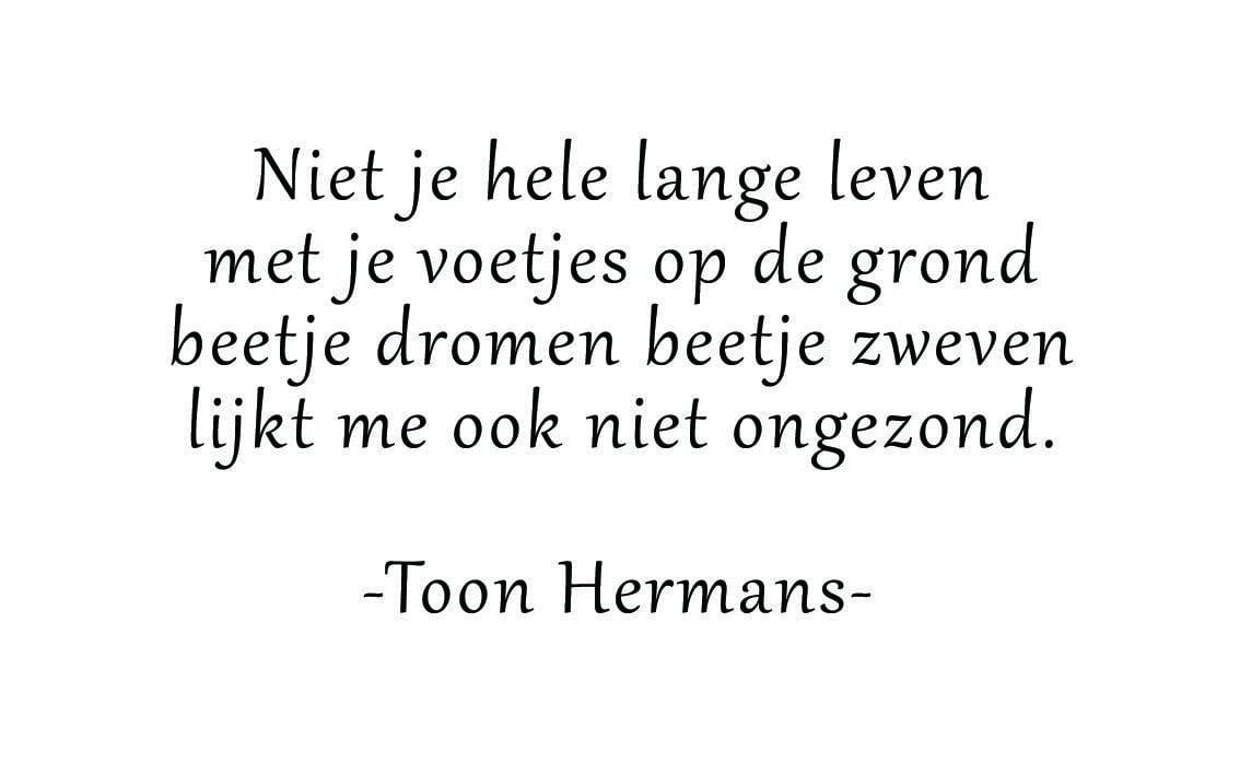 11. Toon Hermans