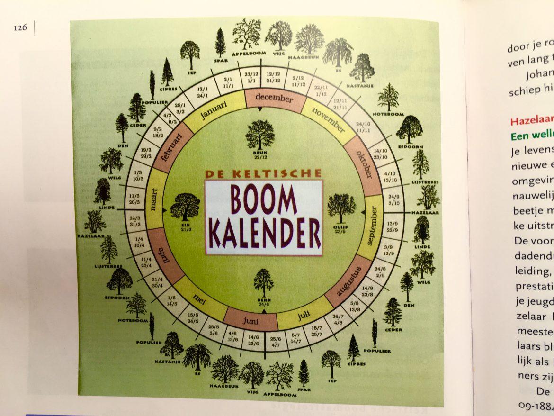 keltische boomkalender.