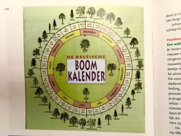 calendario árbol celta.