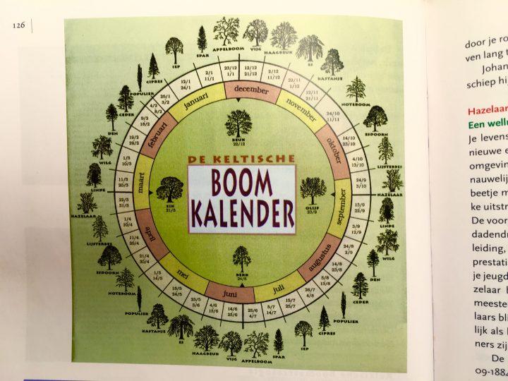 De Keltische Boomkalender